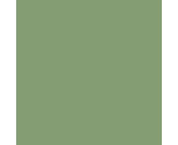5L Modern Eggshell Saxon Green No. 80