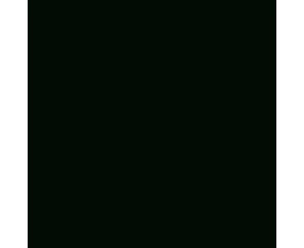 Pigments Black - 100 ml