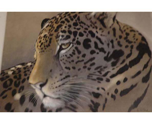 Peinture A.F. Jaguar