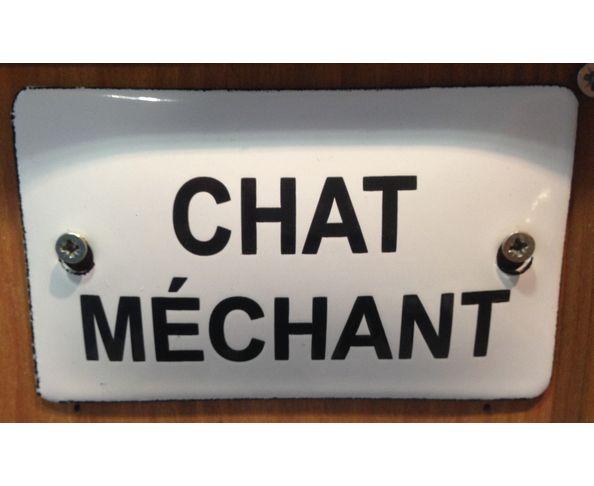 Chat méchant - 6 x 10 cm - Plaque émaillée