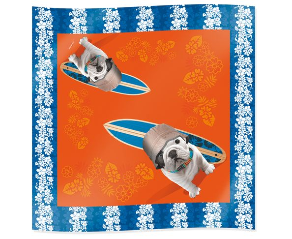 Foulard Teo Dude Orange - Téo Jasmin