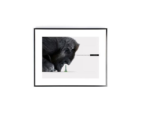 Affiche Nanoblock Gorille - Tirage argentique - Image Republic