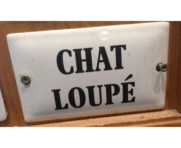 Chat loupé - Plaque émaillée