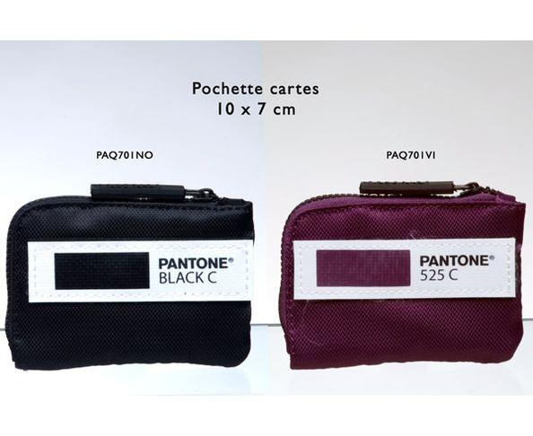 Pochette cartes Pantone 10x7 cm violet